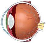 Nauka o zraku